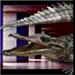 Great Crocodile of the Nile