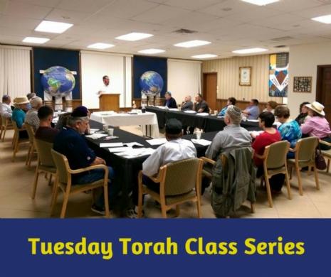 Tuesday Torah Class Series.jpg