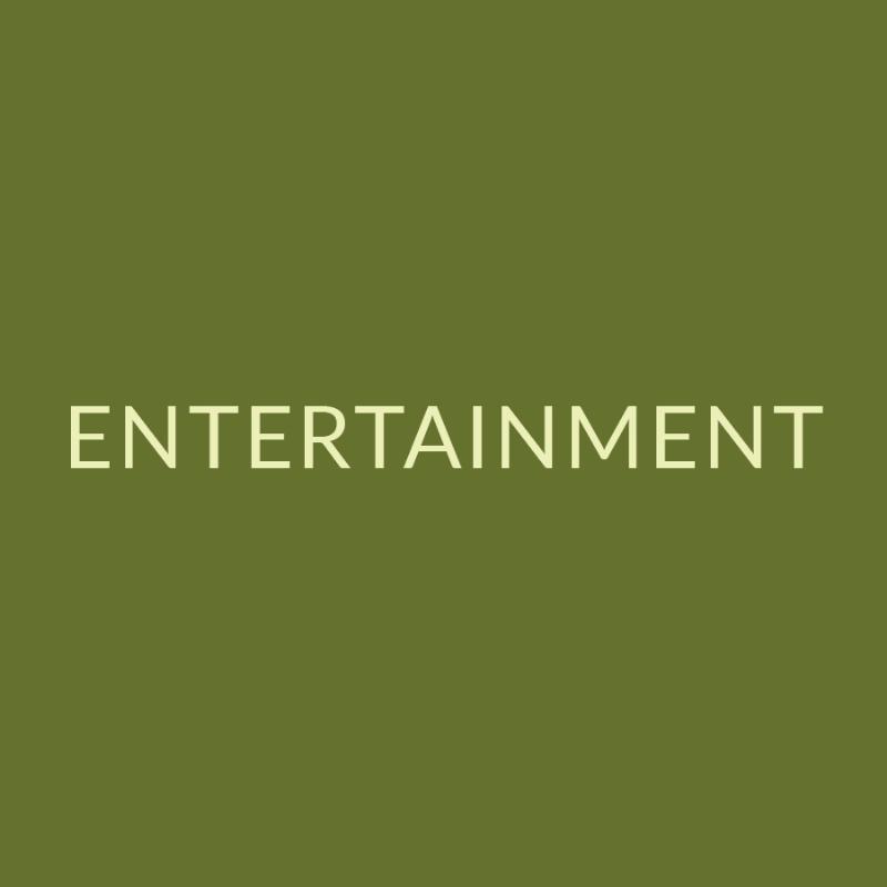 3 - entertainment Icon.jpg