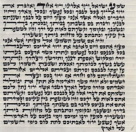 The parchment mezuzah scroll.