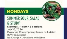 Summer 2017 Soup & Salad box 225x132.jpg