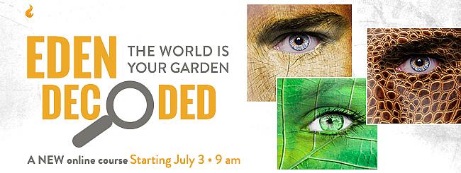 'Eden Decoded': Understanding the Narrative of Sin in the Garden