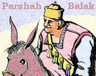 Torah Portion: Balak