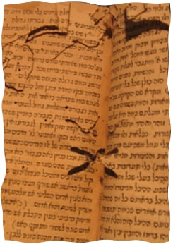 Pages rongées par les vers.