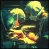 ¿Están Permitidas las cirugías estéticas?