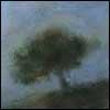 Des arbres: grands et petits