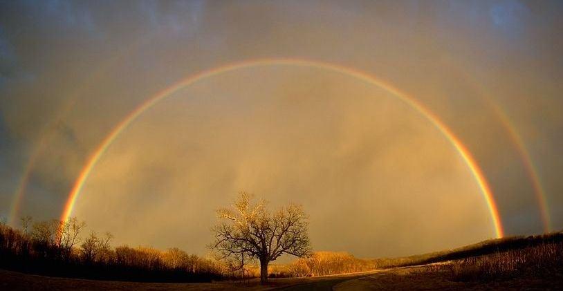Noah Brought Us the Rainbow