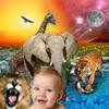 Evolução vs. Criação