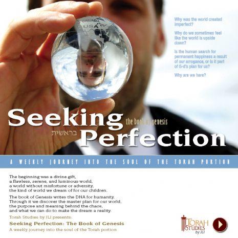 seekingperfectionjpg.jpg