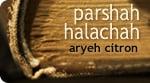 Parshah Halachah