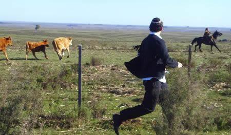 מי רץ יותר מהר?