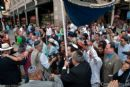 Torah Dedication