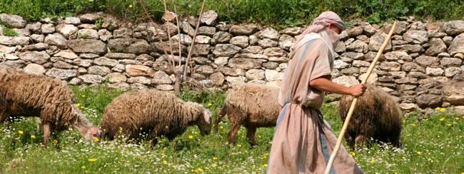 Parasha para Chicos: El Pastor