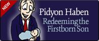 PidyonHaben.jpg