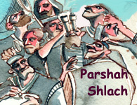 Torah Portion: Shelach