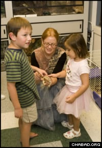 Participants of the flagship Friendship Circle in suburban Detroit enjoy an outing to a pet shop.