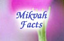 Mikvah Facts