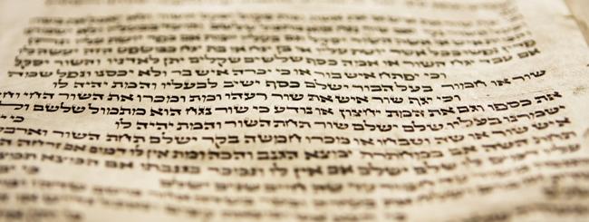Parascha: Judentum leben