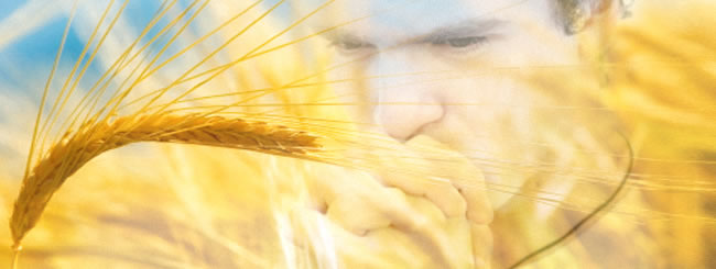 Emor: Le lendemain du Chabbat