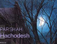 Torah Portion: Hachodesh