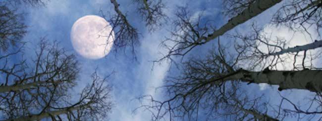 Kora'h: Miracles naturels ou nature miraculeuse?