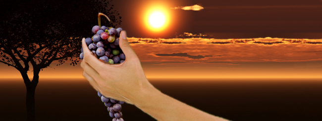 Daily Activities: The Spirituality of Eating