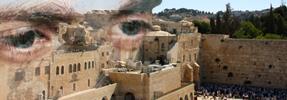 Eyes on the Land