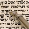 What Is the Midpoint of the Torah? 