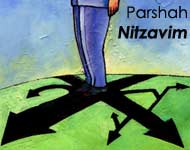 Torah Portion: Nitzavim