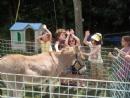 Thumbnail of JwBp4627274.jpg