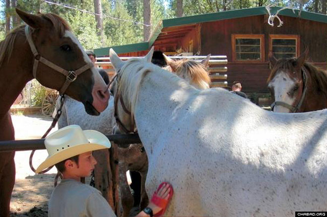 mountain ranch jewish personals Lopez mountain ranch, cache creek, british columbia 412 likes 1 talking about this 1 was here lopez mountain ranch offers an indoor arena to ride.