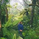 El Yunque Rainforest and Bio Bay Kayak Adventures