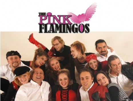 the pink flamingos.jpg