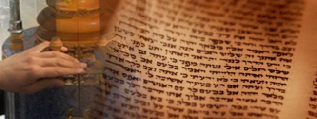Betrachtungen: Die Tora ist unser Leben