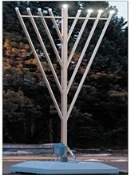 Jewish Community Celebrates With Giant Local Menorah