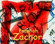 Torah Portion: Zachor