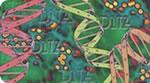 Genetics & Disease