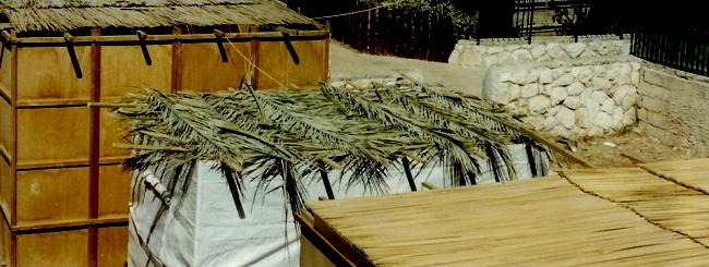 The Deed: The Sukkah