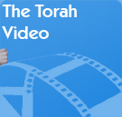 The Torah Video