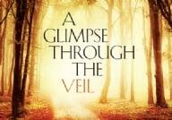 A Glimpse Through the Veil