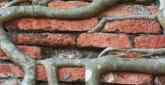 Lápides de Túmulos Judaicos São Usados para Construção em Brest, Bielorússia