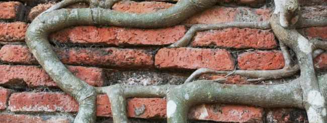 Atualidades: Lápides de Túmulos Judaicos São Usados para Construção em Brest, Bielorússia
