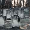 מתי עולים לקבר כשהאזכרה חלה בשבת?