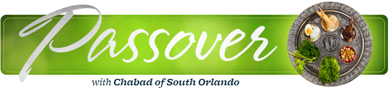 Passover with Chabad of South Orlando