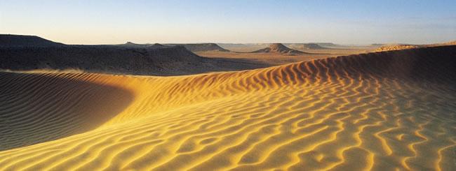 Уроки главы: В пустыне