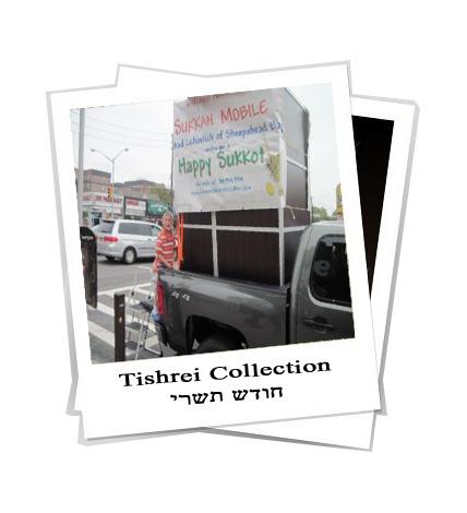 tishrei collection 5771 finale.jpg