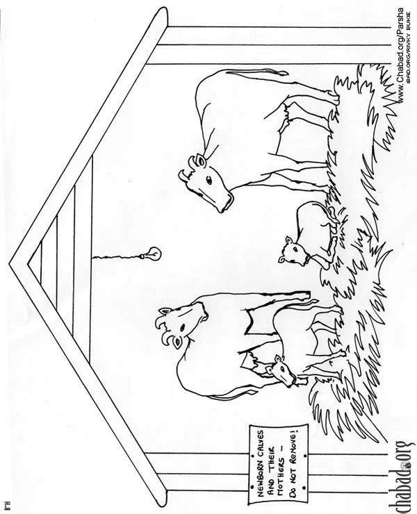 Pioneer Life Coloring Pages