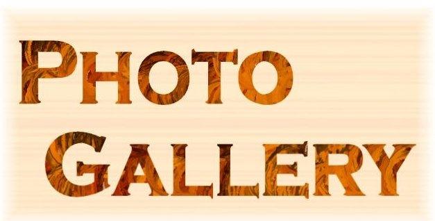 Photo Gallery.jpg