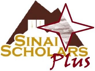 Sinai Plus.jpg