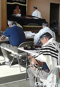 "As part of the ""Arms for Israel"" campaign, the Men's Tefillin Club at Chabad Jewish Center of Snohomish County in Lynnwood, Wash., recited blessings for Israel soldiers and civilians."
